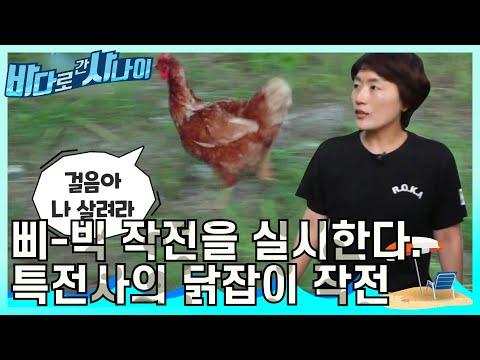 닭 잡아라~! 특전사는 닭 잡는 실력도 남다르다?? 닭vs특전사  [바다로 간 사나이] 32