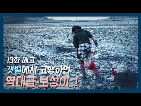 [바다로 간 사나이 13화 예고] 만능재주꾼11월 27일 밤 10시 방송!