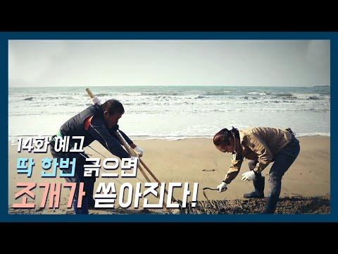 [바다로 간 사나이 14화 예고] 삶의 끝에서 다시 일어선 바다 사나이12월 4일 밤 10시 방송!