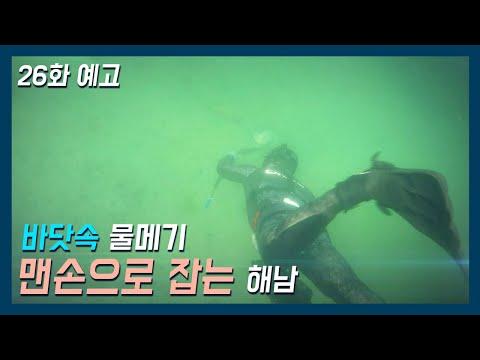 [바다로 간 사나이 26화 예고] 바다가 좋아 해남이 된 사나이3월 5일 밤 10시 방송!